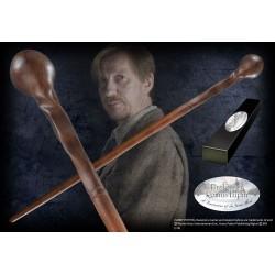 Harry Potter - Professor...