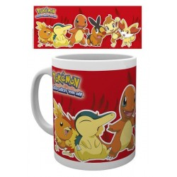 Pokemon Mug Fire Partners