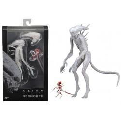 Alien Covenant Action...