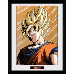 Dragon Ball Z Framed Poster...