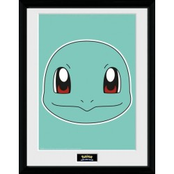 Pokemon Framed Poster...