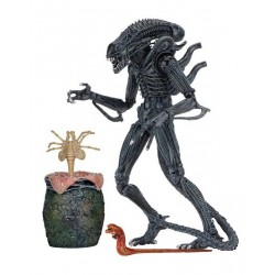 Aliens Action Figure 23 cm...