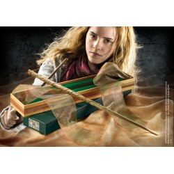Harry Potter: Hermione's...