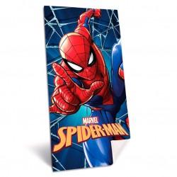 Marvel Spiderman beach...